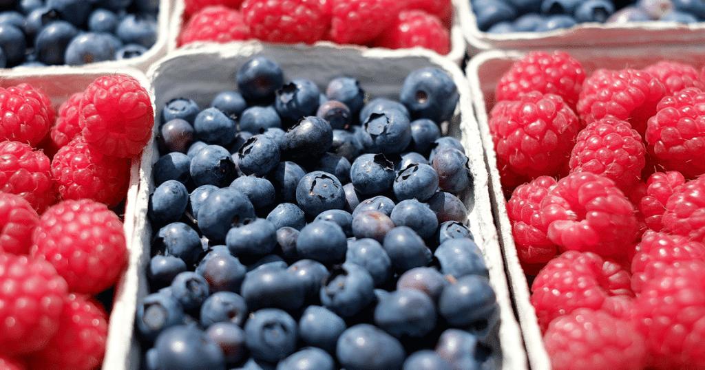 Referenciais de segurança alimentar na indústria: qual a melhor opção?