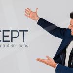 ACCEPT: os pedidos de suporte na perspetiva de um consultor